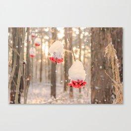 Rowan berries in the snow Canvas Print