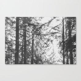 Mt Tabor Canvas Print