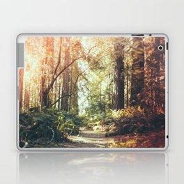 Beautiful California Redwoods Laptop & iPad Skin