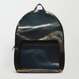 Vertex Noisy Displacement Backpack