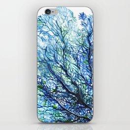 Fan Coral - Aqua iPhone Skin