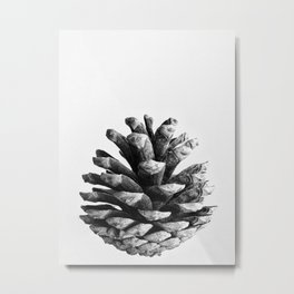 pinecone nature plants Metal Print