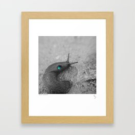 SNAILAXY Framed Art Print