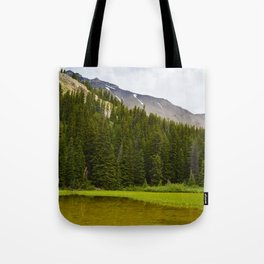 Views along the Wilcox Pass Hike in Jasper National Park, Canada Tote Bag