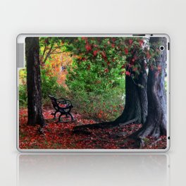 Fall In Henes Park Laptop & iPad Skin