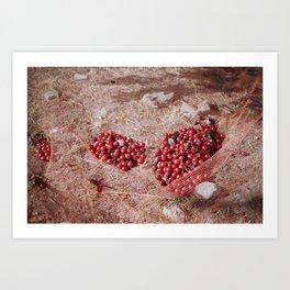 plums in net Art Print