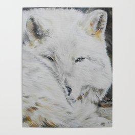 Eye of the Wild by Teresa Thompson Poster