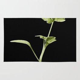 parsley Rug