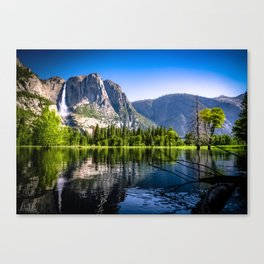 Perfection in the Park Canvas Print