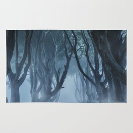 Very cold foggy morning at Dark Hedges Rug