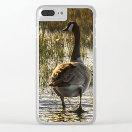 The Golden Goose Clear iPhone Case