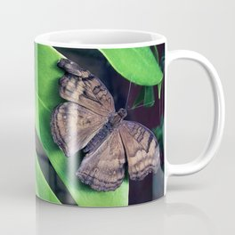 Damaged Coffee Mug