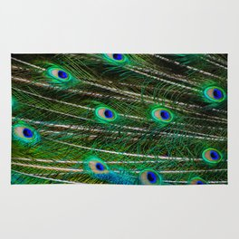 Peacock Feathered Rug