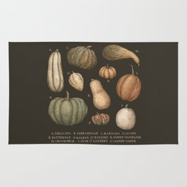 Pumpkins and Gourds Rug