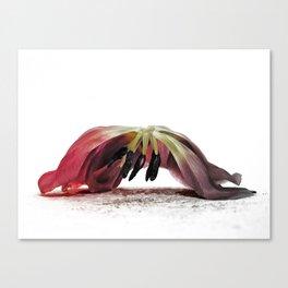 Ars moriendi Canvas Print