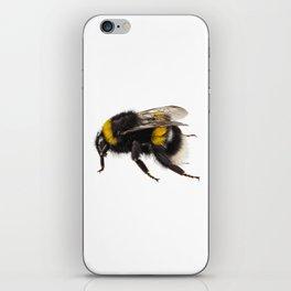 Bumblebee species Bombus terrestris iPhone Skin