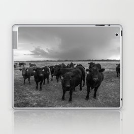 Hanging Out - Black and White Photo of Cows in Kansas Laptop & iPad Skin