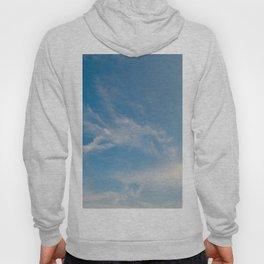 Hummingbird Cloud by Teresa Thompson Hoody
