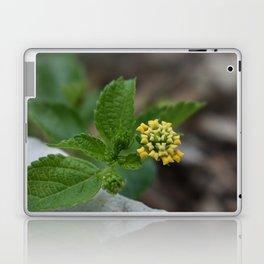 Pillow Flower Laptop & iPad Skin
