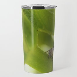 A Jumping Spider (Salticidae) hunts in the garden Travel Mug