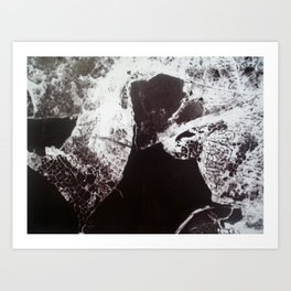 Skeletal Leaf Invert Art Print