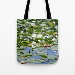 Solitude at Toronto Islands Tote Bag