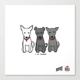 3 Musketeers, I Love Bali Dogs Canvas Print