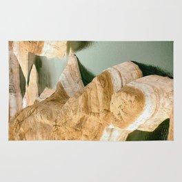 Glen canyon 5 Rug