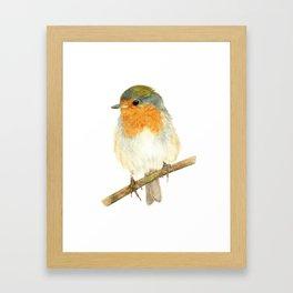 Watercolour Painting Robin Framed Art Print