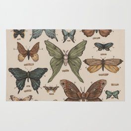 Butterflies and Moth Specimens Rug