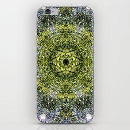 Light Shining Through a Tree Fractal iPhone Skin