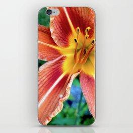 Daylily iPhone Skin