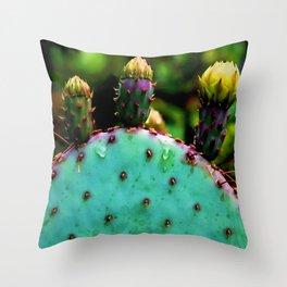 Cactus In The Garden Throw Pillow