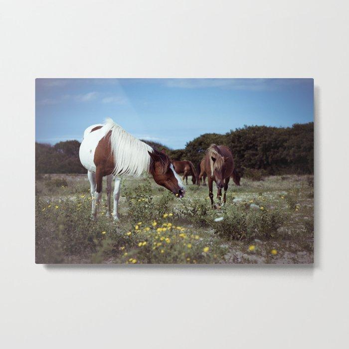 ponies Metal Print