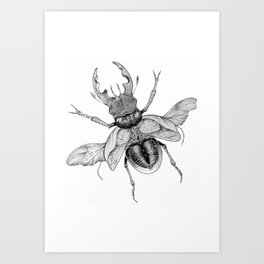 Dotwork Flying Beetle Illustration Art Print