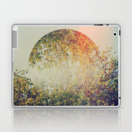 Spring II Laptop & iPad Skin