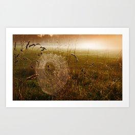 Industrious Spider On A Misty Autumn Dawn Art Print