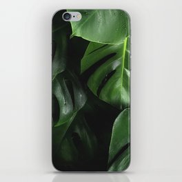 Monstera Plant iPhone Skin