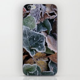 Frost iPhone Skin