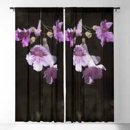 Delicate Pink Blackout Curtain