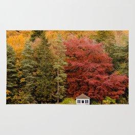 Autumn at the Summer House Rug