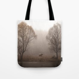 Early morning forest and creek Tote Bag