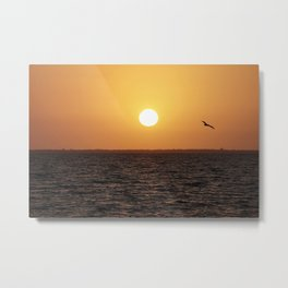 Pelican at Sunset Metal Print