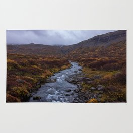 Fall Colors on Iceland's Ring Road Rug
