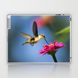 Hummingbird Flight Laptop & iPad Skin