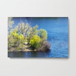 Floating island Metal Print