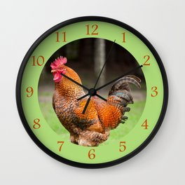 beautiful young Rhode Island Red rooster Wall Clock