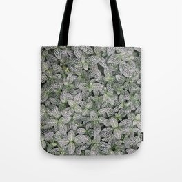 Fittonia albivenis Tote Bag