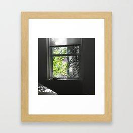Shadow proves the sunshine Framed Art Print