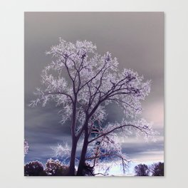 Frosty Scene - Inverted Art Series Canvas Print